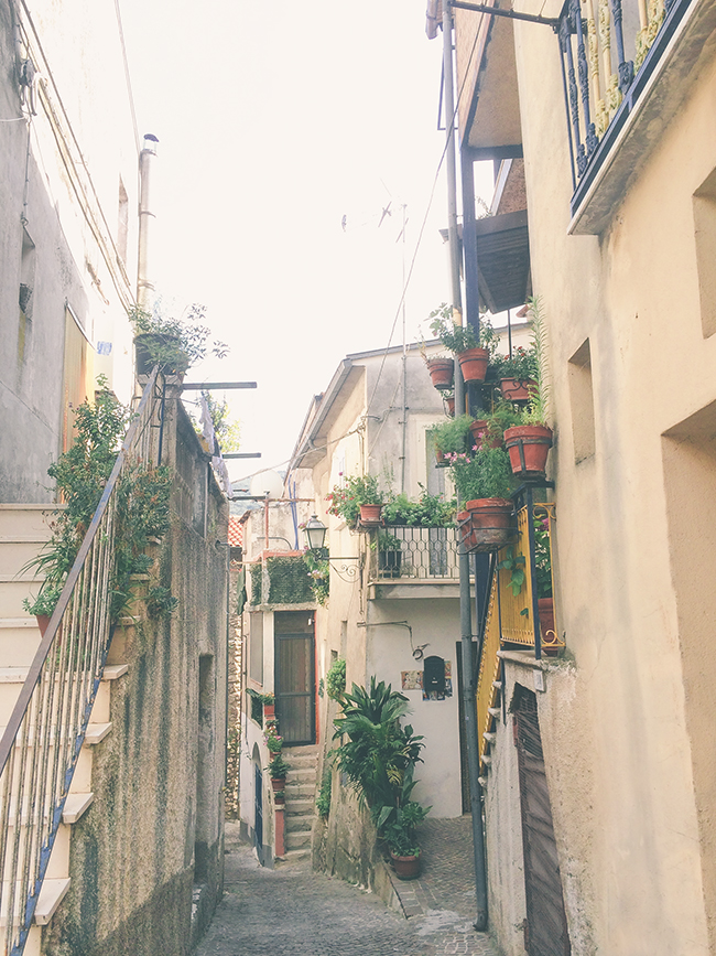 Yellow Savages Viagem Italia Venafro